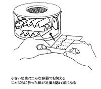 孵化幼虫に足場として入れる厚紙のじゃばら折り